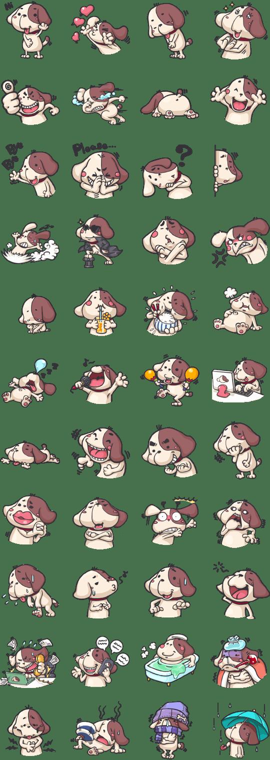11-Koko